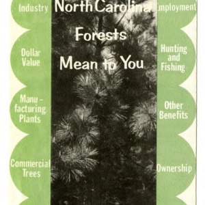 What North Carolina forests mean to you (Folder 229)