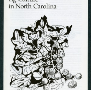 Fig culture in North Carolina (6-86-6M-vmh, revised, AG-109)