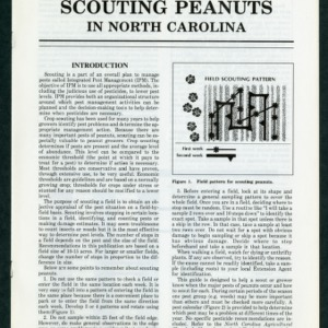 Scouting Peanuts in North Carolina (CS-IPM-1)