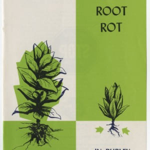 Control Black Root Rot in Burley Tobacco (Leaflet No. 116)