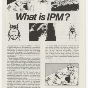 What is IPM? (CS-IPM 4)