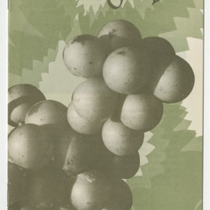 Production Guide Muscadine Grapes (Folder 230, Revised)