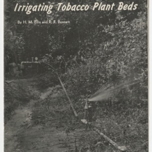 Irrigating Tobacco Plant Beds 1948